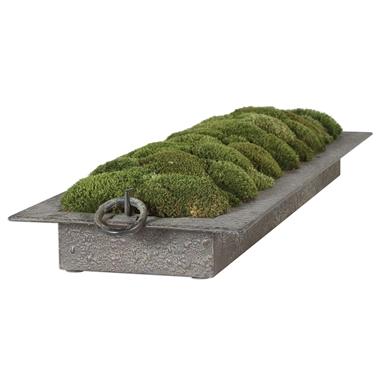 Iron Moss Tray